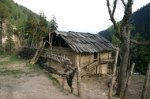 a-typical-village-hut005